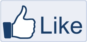 6 Reasons Your Facebook Fan Page Isn't Gathering Likes